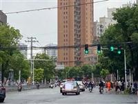 点赞!潢川县这个路口树枝遮挡信号灯,现已被清理...