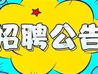 【铁力事业单位】公开招聘工作人员77人!