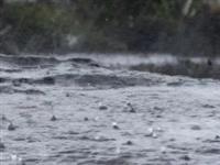 黔东南雨情公布,昨晚最大降水量在这里!下周天气暴雨高温齐上阵
