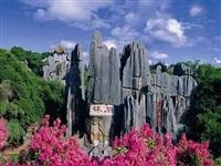 石林申遗成功推动全域旅游发展