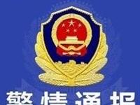 绥中警情通报:我县两名祭祀者因上坟烧纸引发火灾受到治安处罚