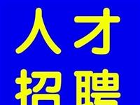 【12期】人才网招聘信息汇总
