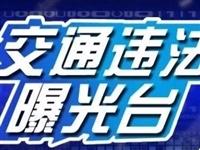 交通违法曝光台第23期