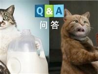 为什么有人一喝牛奶就难受?|No.259