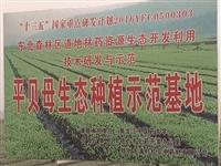 【考察】绥滨县考察团到铁力考察啥?