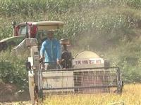 农业机械化|石林县1710亩水稻实现全程机械化作业
