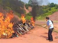 场面震撼!赣州今天烧了3000多支枪,缴了6万多斤炸药......