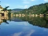 首批国家森林乡村名单公布,平阴这2个村庄上榜