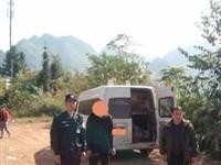【大胆】广西一司机私运生猪牟利,为躲避警察走小路!结果……