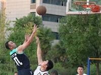 """精彩""""篮""""不住!新蔡县举办""""忠诚杯""""篮球比赛!"""