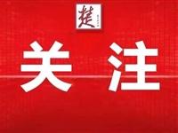 官宣!中国这两地将申办奥运会!