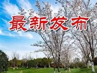 """立案182件,处分乡科级干部8人…金寨纪委1-10月""""成绩单""""!"""
