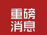2020安徽省选调生招录300人!赶紧来报名吧