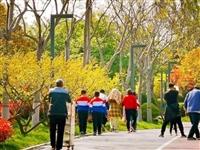 清明假期郑州港区双鹤湖中央公园共接待游客1.26万人次