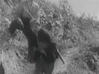 兴县纪录片晋绥烈士陵园CCTV华夏丰碑