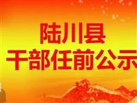 权威发布!陆川36名干部职务调整,现进行任职前公示......