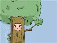 自从把小孩当植物养,我整个人豁然开朗……哈哈哈哈哈哈哈哈