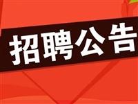 容城县公开招聘综合执法  辅助工作人员公告