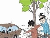 广饶两人拿弹弓打车盗窃,最终被...