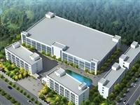 投资1.2亿!隆昌这个大项目明年4月投产,年销售逾亿元——