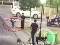 女子遛3只狗不牵绳!男子遭狗撕咬下体受伤严重,缝了30多针