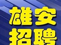 中国雄安集团最新招聘 17个名额等你来