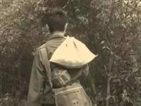 邹城人带咸菜上学的那些年,你们还记得吗?