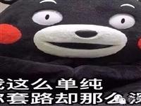 临泉人警惕:冒充银行短信诈骗出现新手法!