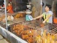自贡暂停活禽活畜交易
