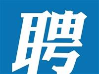 宏鑫科技有限公司招临时工多名;万达益禾堂招聘全职2名