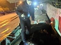 事发大厂:利用渣土车盗窃,江北新区警方铲除一7人盗窃团伙!