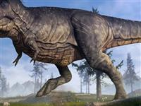 重磅!睢县恐龙展霸道来袭,来建业重返侏罗纪!门票免费送!
