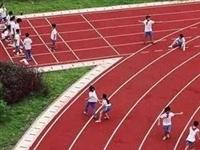 齐河两所学校上榜!荣获省级体育专项特色学校