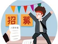 """【招募啦!】2019年""""霍邱县大学生政务实习""""暑期社会实践,今夏续约!"""