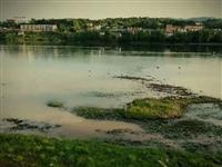 傍晚时分散步沅陵江边柳林,那风景,那留言,让人心疼!