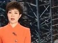 祝贺!枝江热线网亮相央视,助力企业复产复工