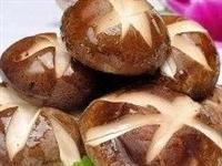干香菇和鲜香菇,哪种更有营养?