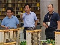 商丘市副市长、睢县县长一行莅临建业·公园里指导工作