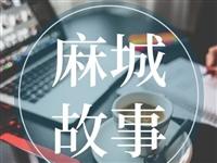 湖北省麻城市人民法院开庭公告,这22名黑社会分子即将开庭受审