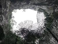 壮观!19个天坑!广西发现世界级天坑群
