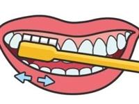 刷牙前到底要不要沾水啊?今天终于有人讲清楚了,招远的你抓紧了解下吧