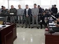 七台河关注|七台河公开审理一起重大涉黑案件14名被告人受审