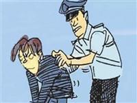 邹城:公安局破获一起盗窃案