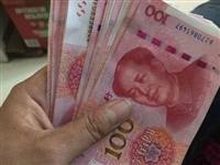 @招远人!举报这四类行为最高可奖10万元!