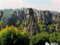 喀斯特帝国:李子园箐、万年灵芝篇