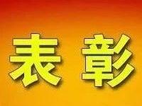 厉害了!潢川县这些人拟获全市表彰!有你认识的吗?