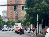 提醒!潢川一交叉路口红绿灯被树枝挡住,通行时千万注意...