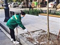 市园林绿化和环卫中心开展行道树补植工作