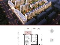 卢龙未来城3室2厅1卫
