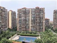 天府花园 单价5000多 超大阳台 证满两年